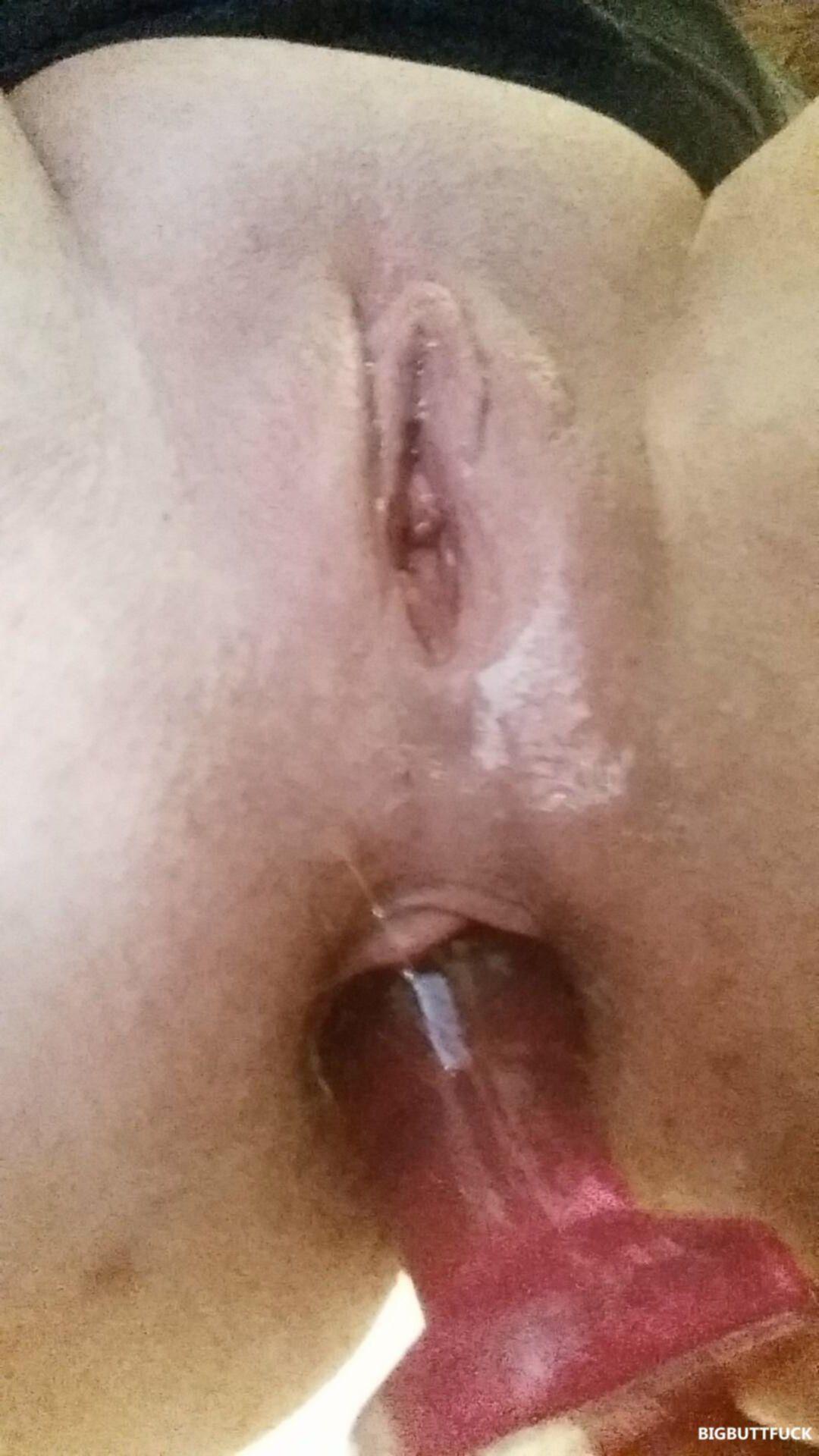 Голые задницы женщин с анальными пробками внутри